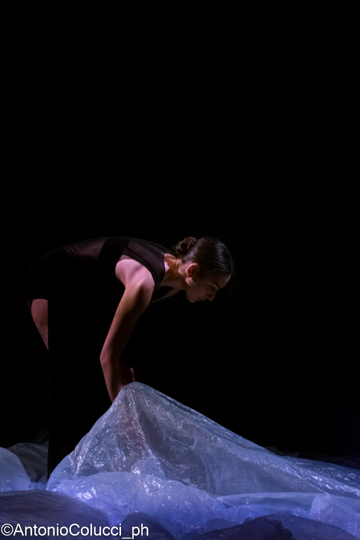 Danza Contemporanea 25 Gennaio - 3